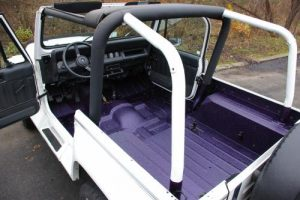 Purple bed liner